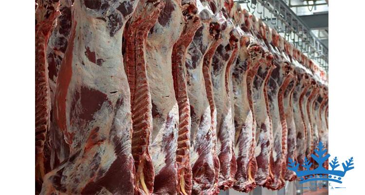 سردخانه گوشت